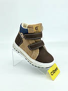 Clibee H207 Brown