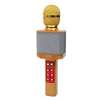 Караоке-микрофон портативный DM WS-1828, золотой
