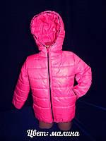 Демисезонная куртка на девочку (окантовка зебра) 2027 (рост: 98,104,110,116)