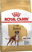 Royal Canin (Роял Канин) Boxer Adult для собак породы Боксер старше 15 месяцев, 12кг.