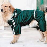Дождевик для больших собак «Тропик», зеленый