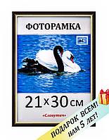 Фоторамка пластиковая А4, 21х30, рамка для фото, дипломов, сертификатов, грамот, картин, 1415-06