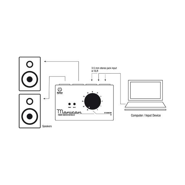 Пассивный контроллер для мониторов Palmer PMONICON