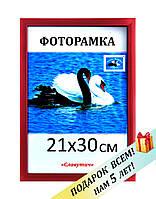 Фоторамка пластиковая А4, 21х30, рамка для фото, дипломов, сертификатов, грамот, вышивок 1611-20