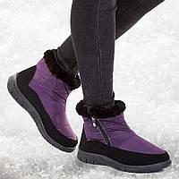 Ботинки женские оптом Гипанис фиолетовые, фото 1
