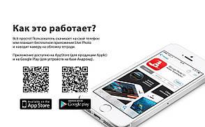 """4D Тетрадь ученическая Лев, 18 листов, серия """"Животные"""", фото 2"""
