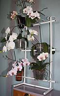 Фаленопсис, подставка для цветов, фото 1