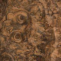 Шпон корня ореха американского ( сорт А), фото 1