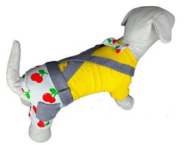 Летний костюм трикотажный для собак