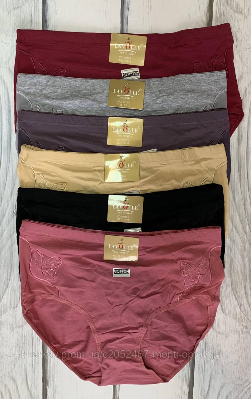 Интернет магазин оптовый женского белья женские плавки белье