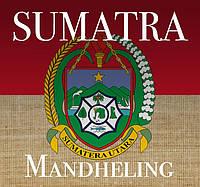 Свежеобжаренный кофе в зернах Индонезия Суматра Мандхелинг (ОРИГИНАЛ), арабика Gardman (Гардман), фото 1