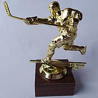 Кубок хоккейный полевой игрок