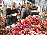 Производитель: Cancan Турция Пресс для цитрусовых и гранат Cancan 0103, фото 5