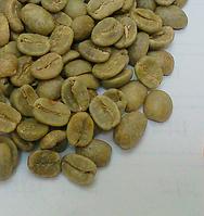 Кофе зеленый в зернах Колумбия Марагоджип (ОРИГИНАЛ), арабика Gardman (Гардман) , фото 1