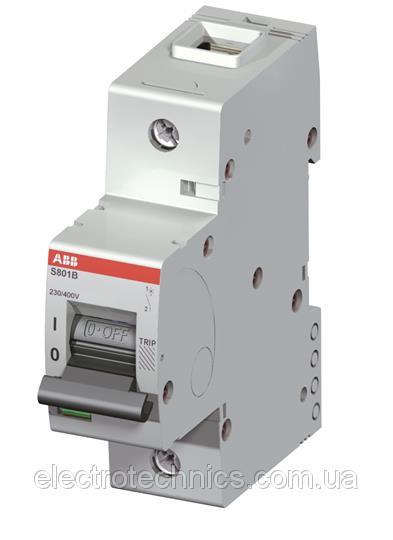 Автоматический выключатель ABB S801B-C125 (1п, 125A, Тип C, 16kA) 2CCS811001R0844