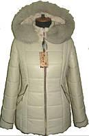 Молодёжная зимняя куртка , фото 1