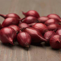 Лук Red Garnet 300 гр (луковицы)