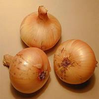 Лук J.P. Vertus 300 гр (луковицы)