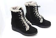 Замшеві черевики чорні Sasya 521-83, фото 2