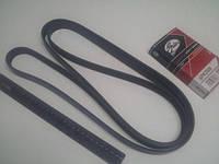Ремень генератора ручейковый HYUNDAI/KIA, Gates (6PK2500)