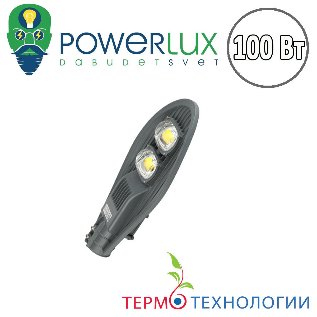 Светодиодный светильник POWERLUX 100 W Silver