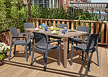 Набор садовой мебели Samanna Lima Dining Set из искусственного ротанга ( Allibert by Keter ), фото 8