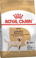 Royal Canin (Роял Канин) Labrador Adult для лабрадоров ретриверов старше 15 месяцев, 12кг.