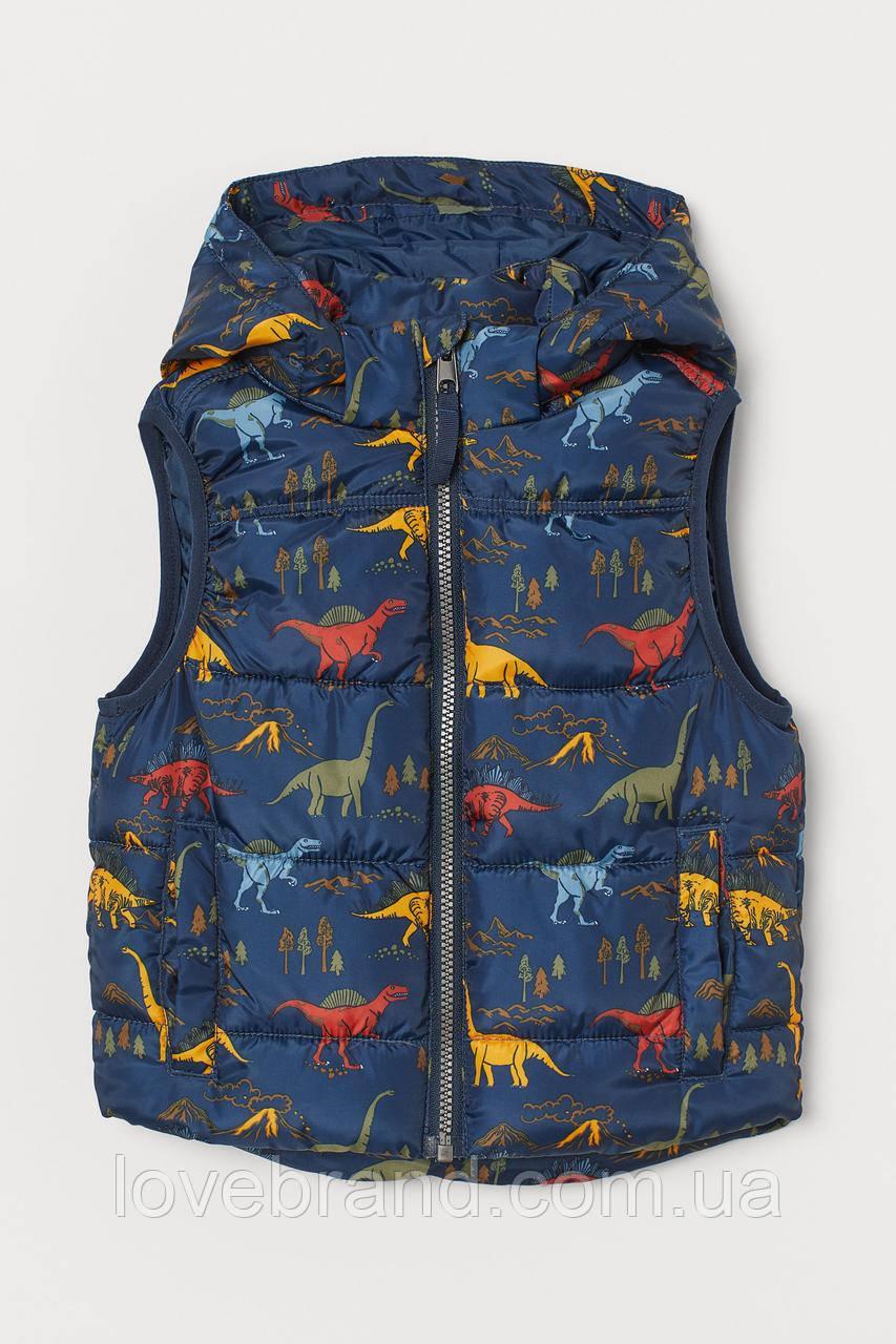 """Жилетка с капюшоном для мальчика H&M """"Динозавр"""" демисезонная жилетка детская с динозаврами"""