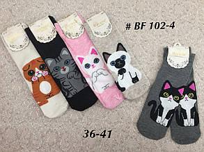 Женские носки с Котятами носочки