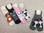 Жіночі шкарпетки з Кошенятами шкарпетки, фото 2