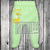 Трикотажные ползунки р 74 5-7 мес детские штанишки на широкой еврорезинке для малышей ИНТЕРЛОК 3165 Зеленый А