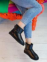 Угги женские UGG Classic II Mini Black, фото 1