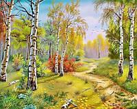 Алмазная вышивка на деревянном подрамнике Осенний пейзаж 50 х 40 см (арт. TN298)