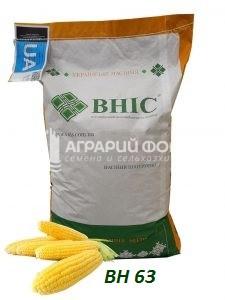 Семена кукурузы ВН 63 /ВНИС / Насіння  кукурудзи ВН 63