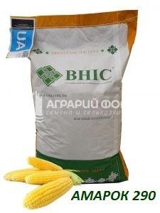 Семена кукурузы Амарок 290  /ВНИС/ Насіння  кукурудзи АМАРОК 290