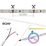 Светодиодная лента B-LED 24V 5050-60 NW IP20 4500К, негерметичная, 5 метров, фото 3