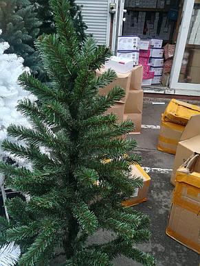 Новогодняя Елка Смерека 2,5 м +в подарок крепление, фото 2