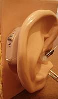 Современные слуховые аппараты – что это?
