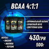 BCAA 4:1:1 Fs Nutrition
