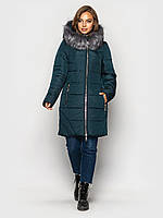 Куртка женская, цвет: зеленый, размер: 44, 50, 52, 54, 56, 58, 60
