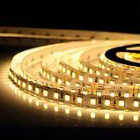 Светодиодная лента B-LED 2835-120 WW теплый белый, негерметичная, 5метров, фото 2