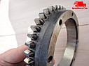 Шестерня привода компрессора МТЗ 80, 82 (Z=43) двигатель Д 260 (пр-во ММЗ). Ціна з ПДВ, фото 3