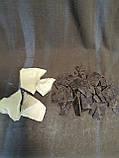 Какао терте моноліт Niche Gana 500 г плюс Какао-масло Favorich 350 г -  Гана, Малайзія, фото 2
