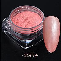 Втирка для дизайна ногтей YGF14