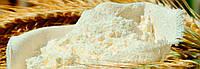 Сухая пшеничная клейковина (глютен) мешок 25 кг