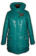 Зимняя куртка , цвет шампань и брюза р 44-50, фото 1