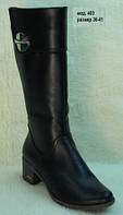 Женские зимние сапоги на широком каблуке, фото 1