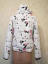 Женская сноубордическая куртка Protest (M) мембранная, фото 2