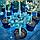 Ель колючая 'Глаука Глобоза' ШТАМБ Picea pungens'GlaucaGlobosa' h 60-80  см, фото 4