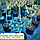 Ель колючая 'Глаука Глобоза' ШТАМБ Picea pungens'GlaucaGlobosa' h 60-80  см, фото 2